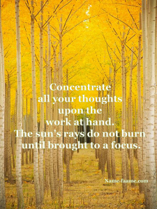 power of concentration quote