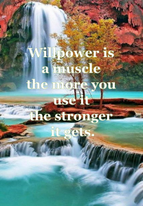 Will power quote