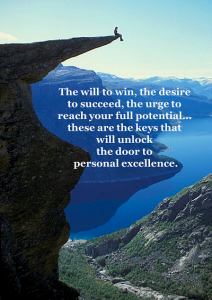 The Pursuit of Excellence quote