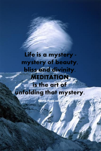 Achieving Success through Meditation & Higher Realization